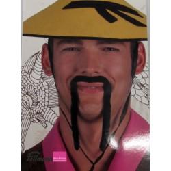 Schnauz Chinese